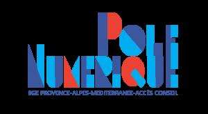 Logo pole numérique